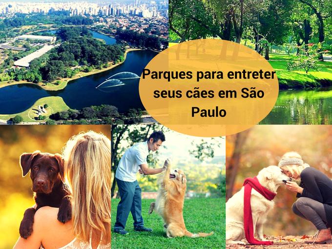 Parques em São Paulo para cães